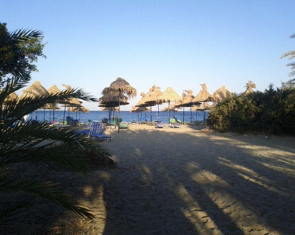 Vai Beach Crete East Lasithi Crete Cretamap Com