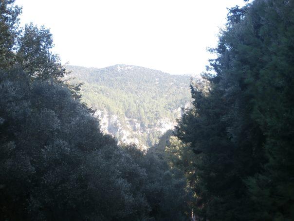 Agia Irini Gorge Sougia Chania  Crete - Cretamap.com
