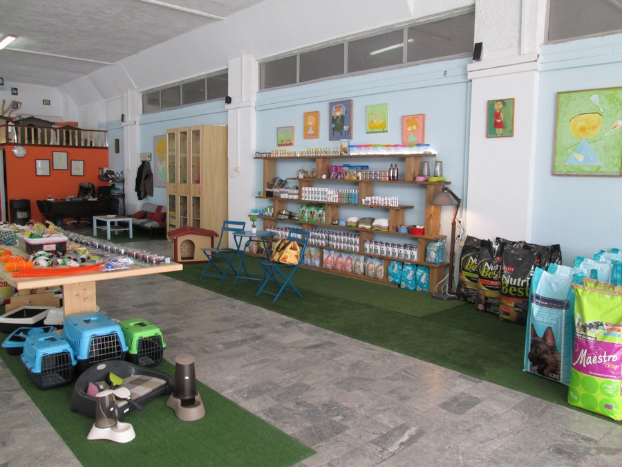 We are Pet Vet Market, Albuquerque's first ever all natural pet store. Founded in , we provide our community with wholesome, holistic products and services .